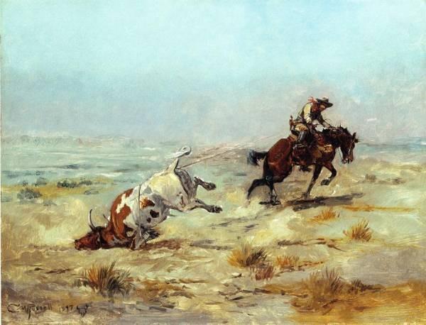 Lassoing a Steer
